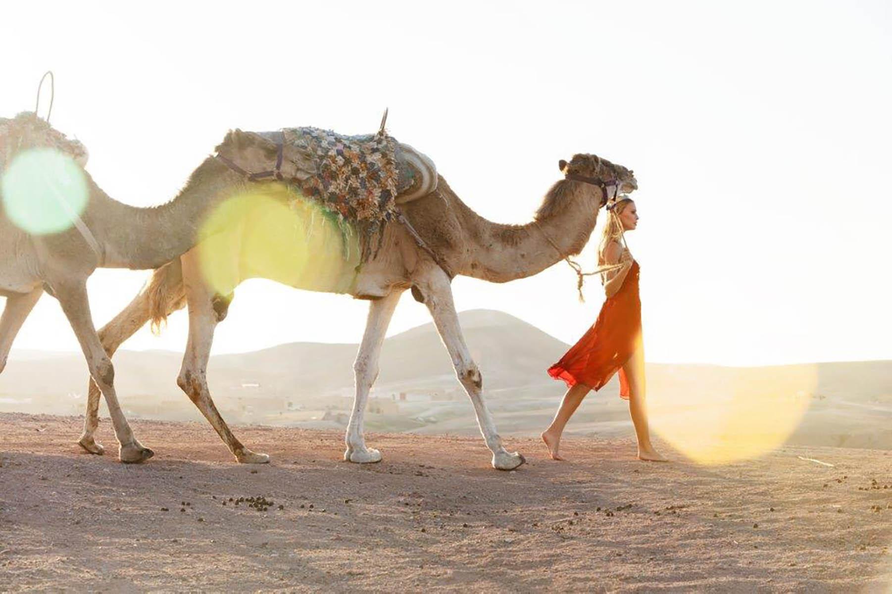 Kamelen 2